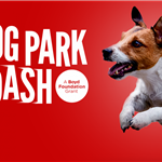 Dog Park Dash Picture.png